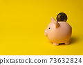 Pink piggy money box with coin of Bitcoin 73632824