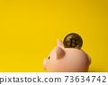 Bitcoin gold crypto coin inside piggy money box 73634742