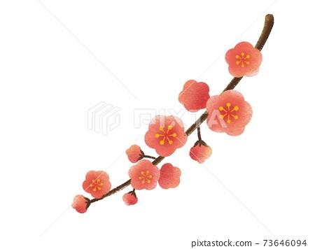 Plum blossom 73646094