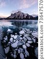 Abraham Lake Ice Bubble 73647570