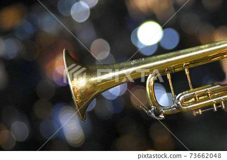 trumpet 73662048