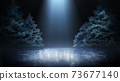 Spruces in rink. Empty beautiful winter background. Light illuminating ice. Spruces and ice in black background. Scene 73677140