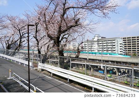 도쿄 아라카와 구를 주행하는 도호쿠 신칸센 E5 계 H5 계 전동차 (녹색)과 푸른 하늘 73684233