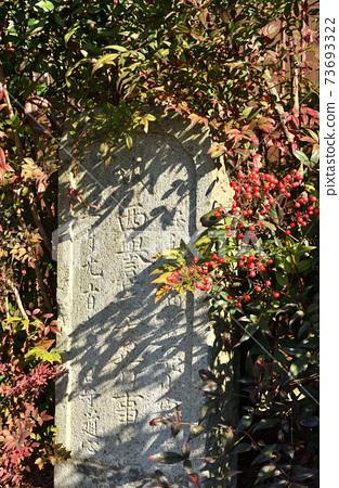 崎玉市的寺廟和神社丸之崎觀音堂 73693322