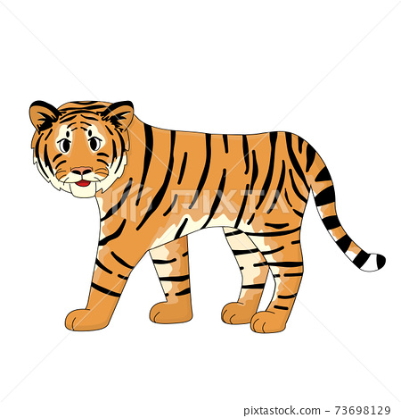 Cute Orange smiling tiger is walking. Isolated animal on white background 73698129