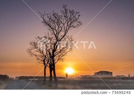 Sa玉縣的田沼稻田的日出籠罩在晨霧中 73698248