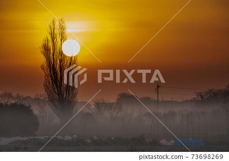 Sa玉縣的田沼稻田的日出籠罩在晨霧中 73698269