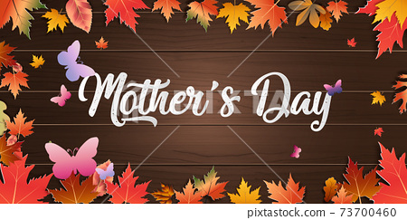 Autumn calligraphy background wood texture layout decorate with leaves for poster and frame leaflet or web banner. mother Happy Mother's Day beautiful woman and child.Vector illustration 73700460