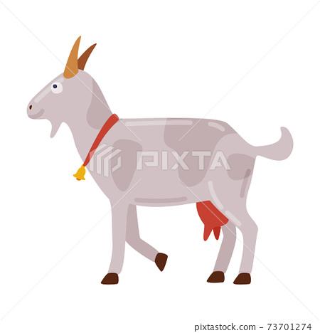 White Goat Animal, Farm Livestock Cartoon Style Vector Illustration 73701274