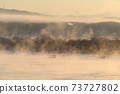 Water mist rising from the river on a winter morning 73727802