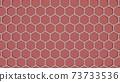 六角形管形組成的蜂窩形 73733536