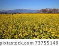 나기사 공원의 유채 꽃과 히라 산맥 [시가현 모리야마시] 73755149