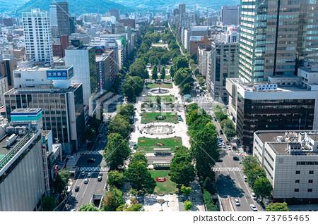 從電視塔/北海道札幌看的大通公園的夏日風景 73765465