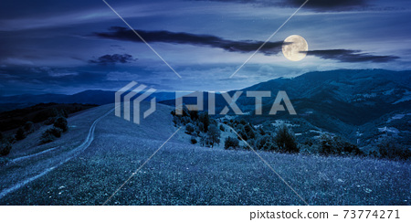path through the mountain meadow at night. mysterious summer landscape of carpathian countryside in full moon light. fluffy clouds on the blue sky 73774271