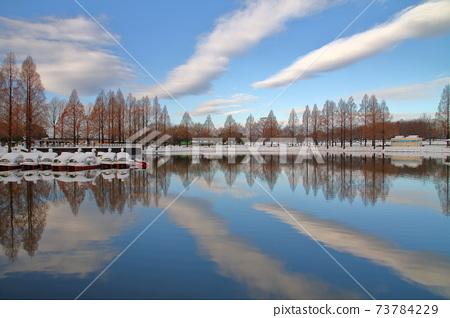 사이타마 현 카와 고에시 수상 공원 눈의 공원 연못에 비치는 구름 73784229