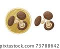 香菇蘑菇例證 73788642