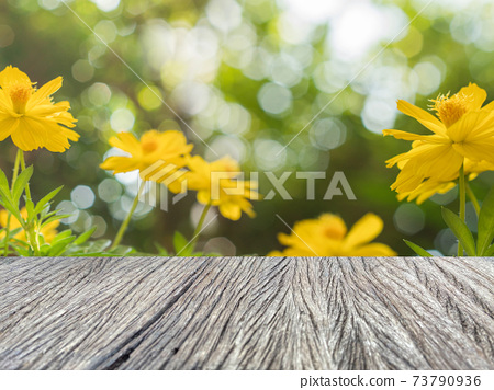 Table top view with flower view. 73790936