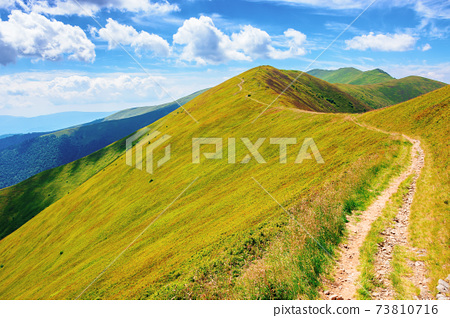 path through borzhava ridge. beautiful summer nature landscape of carpathian mountain. green hillside meadows beneath a blue sky with clouds. stoj peak in the distance 73810716