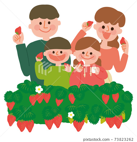 家庭草莓採摘 73823262