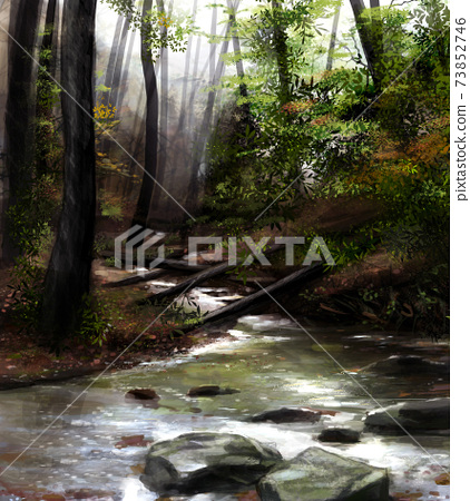 Forest river nature. 73852746