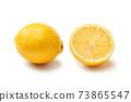 Lemon 73865547
