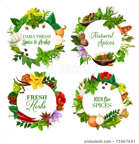 Natural spices and kitchen herbs round banners 73867691