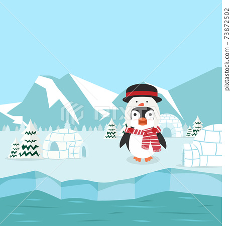 Penguin wearing snowman hat with winter north pole arctic 73872502