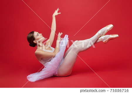 attractive ballerina poses gracefully in the studio on a red background 73886716