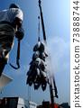 從船上卸下冷凍的金槍魚 73888744