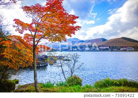 [長野]秋天的白葉湖 73891422