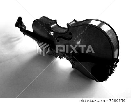 小提琴的影子 73891594