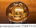 Bitcoin coins in a crystal ball 73897319