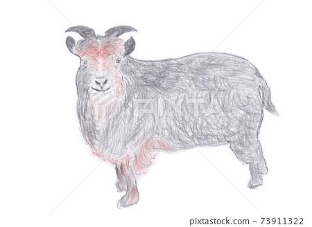 Goat breeding illustration 73911322