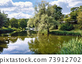 City park with old lush tree on bank of calm pond 73912702