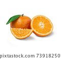 Fresh orange with orange slices and leaves isolated on white background. Orange with clipping path. 73918250