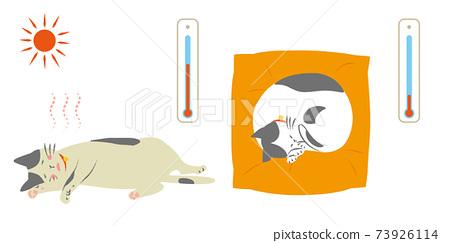 看起來很熱的貓和看起來很冷的貓 73926114