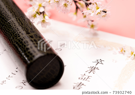 Diploma, round tube and cherry blossoms 73932740