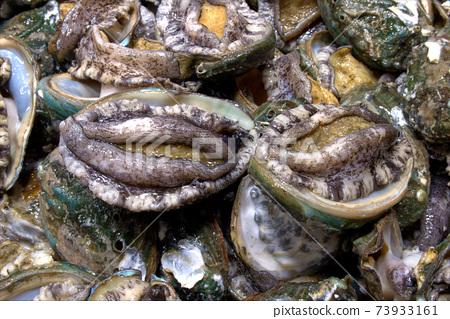顛覆魚類市場, 73933161