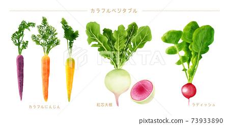 水彩插圖多彩蔬菜集 73933890