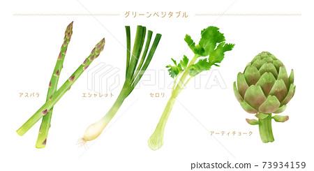 水彩插圖綠色蔬菜集 73934159
