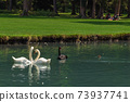 Castle Park of Vizille with Swans in Lake 73937741