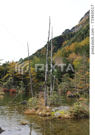 Akira Misaki Pond 73960017