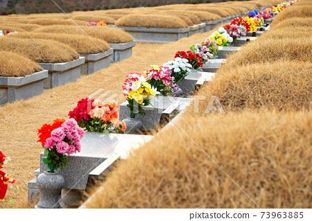 대전가족공원, 공원묘지, 73963885