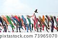 鯉魚旗2 73965070