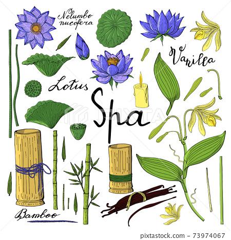 spa set of vanilla orchid, lotus flower, bamboo 73974067