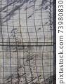 벽면의 철망과 담쟁이 덩쿨의 그림자 73980830