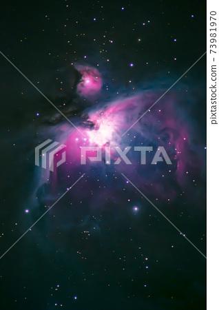 獵戶座大星雲 73981970