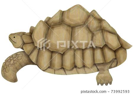 巨型烏龜的手繪插圖的材料 73992593