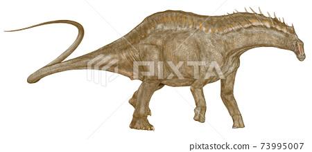 mar龍在白堊紀早期居住在阿根廷的一種奇怪的帆的蜥腳類動物。蜥腳類動物。 73995007