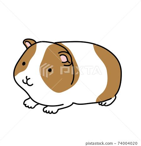 Illustration of a loose guinea pig 74004020